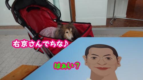 022_convert_20141009155135.jpg