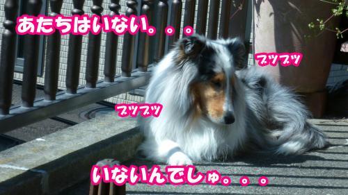 030_convert_20140325132012.jpg