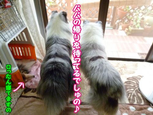 030_convert_20140901133619.jpg