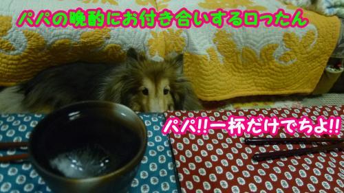 054_convert_20140903154117.jpg