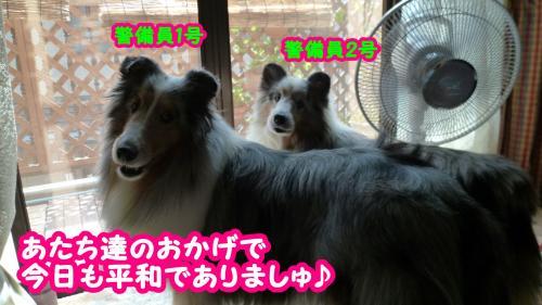 061_convert_20140910151043.jpg
