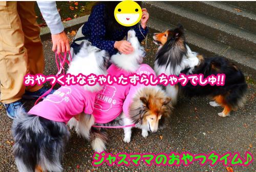 062_convert_20141013162444.jpg