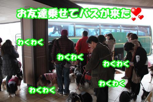 065_convert_20140303172201.jpg