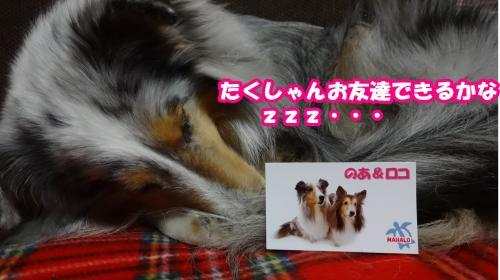 069_convert_20140228131213.jpg