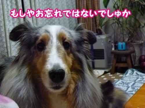 10_convert_20140529165554.jpg