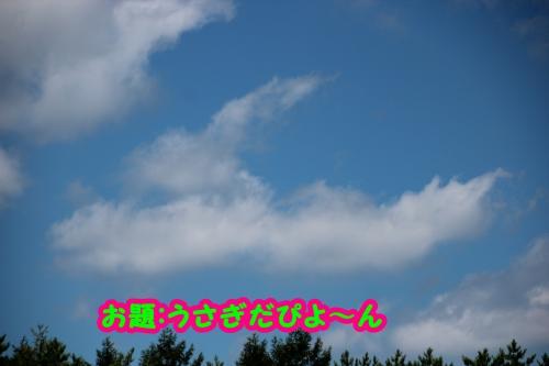 142_convert_20140908141805.jpg