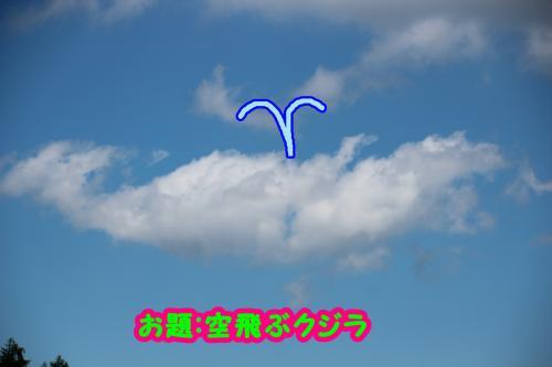 177_convert_20140908141857.jpg