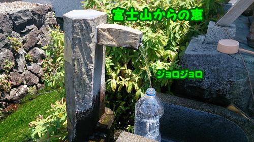 DSC_2498_convert_20140730173504.jpg