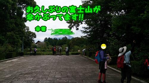 DSC_2529_convert_20140804145537.jpg