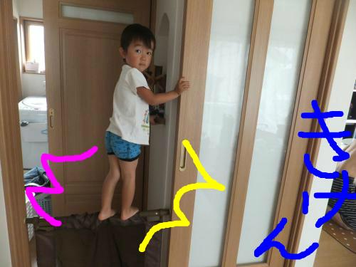 snap_poohsandaisukiyo_20149411539.jpg