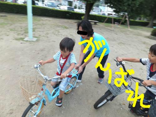 snap_poohsandaisukiyo_20149664425.jpg