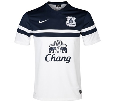 Everton Third kit for the 2013-14