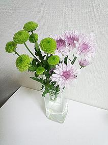 花20140926