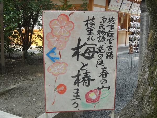 枝垂れ梅と椿まつり看板