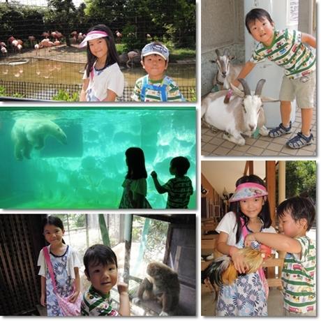Ueno Zoo-1