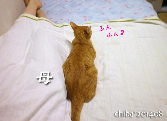 chiba14-08-106.jpg