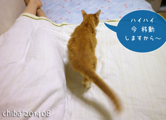chiba14-08-107.jpg