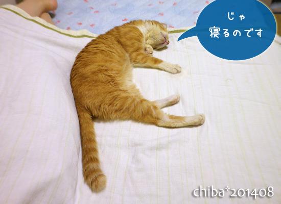 chiba14-08-110.jpg