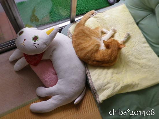 chiba14-08-134.jpg