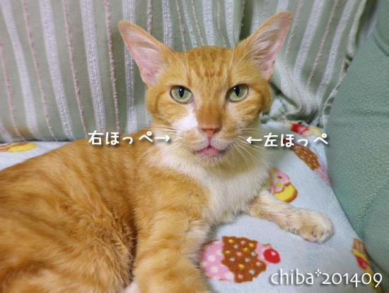 chiba14-09-121.jpg