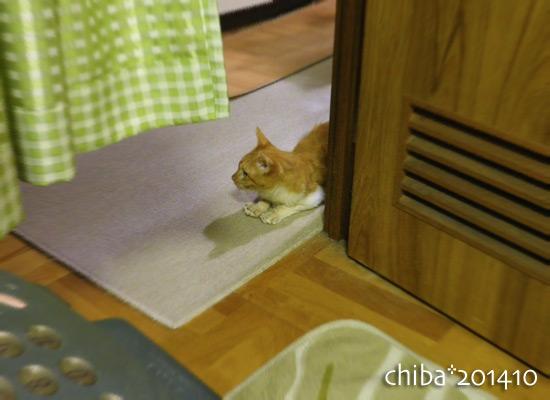 chiba14-10-03.jpg