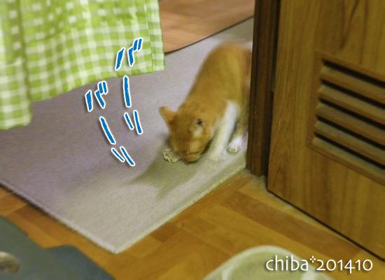 chiba14-10-04.jpg