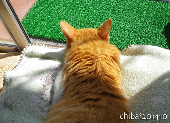 chiba14-10-57.jpg