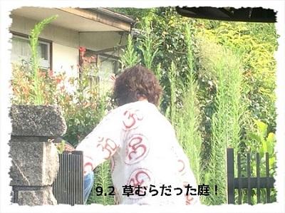 20140906d1.jpg