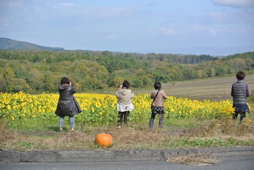 Nikon+040_convert_20141014171658.jpg