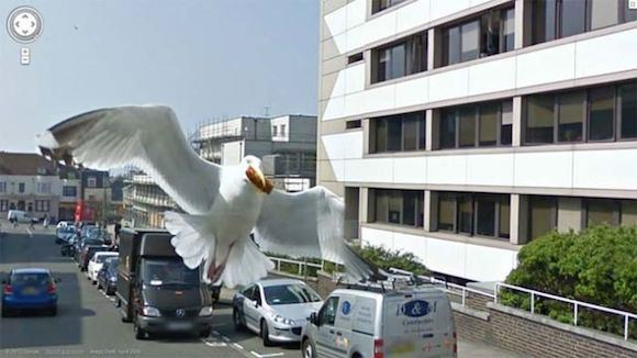the_most_bizarre_google_street_view_maps_ever_640_01.jpg