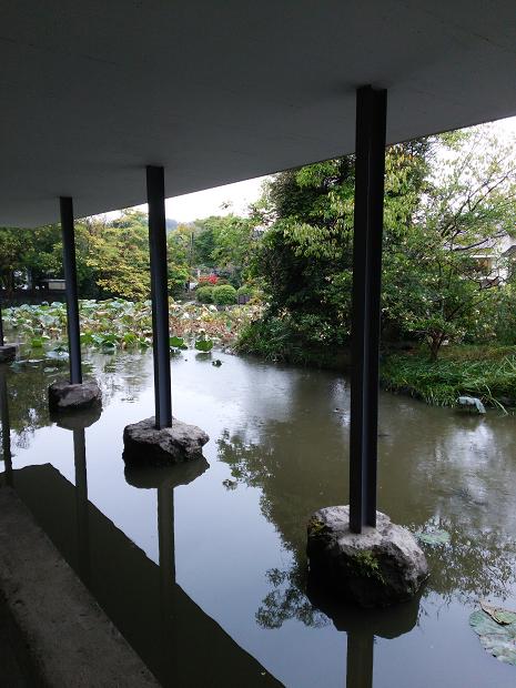 美術館から源氏池を望む