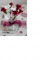 carnation-RN.jpg