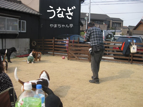 やまちゃん宅 066 (2)