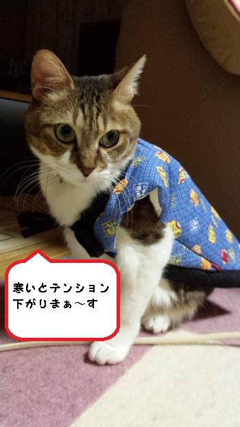 20140121_063701 (1)