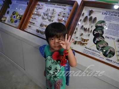 昆虫動物園(Siam Insect Zoo)&...