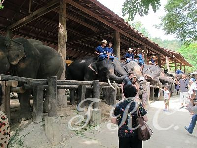 チェンマイ観光ツアー