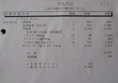2014-08-24-04.jpg