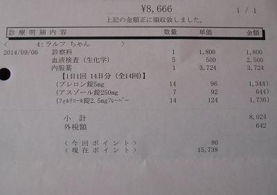 2014-09-06-04.jpg
