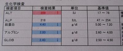 2014-09-20-01.jpg