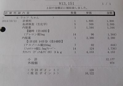 2014-10-11-05.jpg
