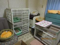 2014.07.13-B-16 cage