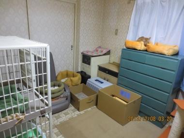 2013.12.08-2 yuki