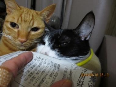 2014.04.16-4 yuki & nao