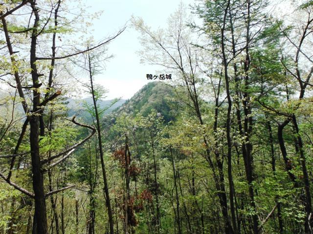 箱山城(中野市・山ノ内町) (15)