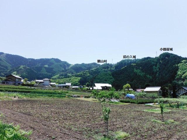 間山館(中野市) (20)