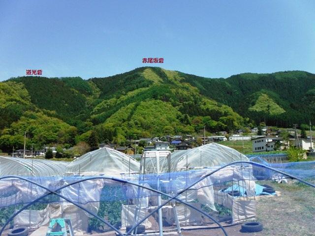 間山館(中野市) (24)