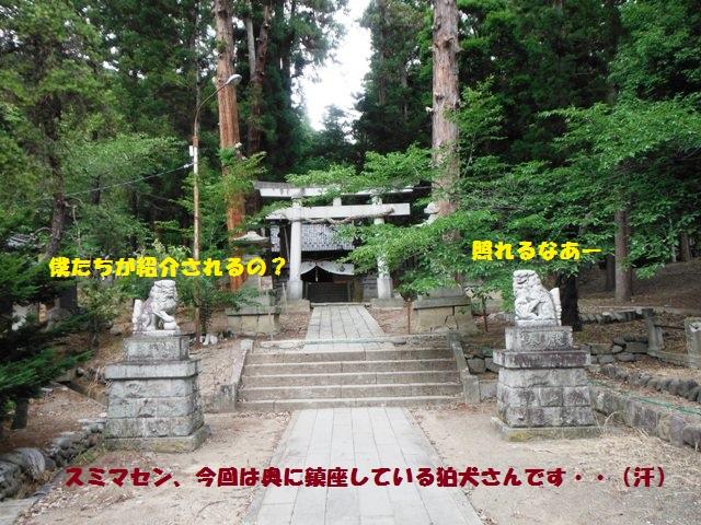 オフシーズン葛尾城2014 (62)