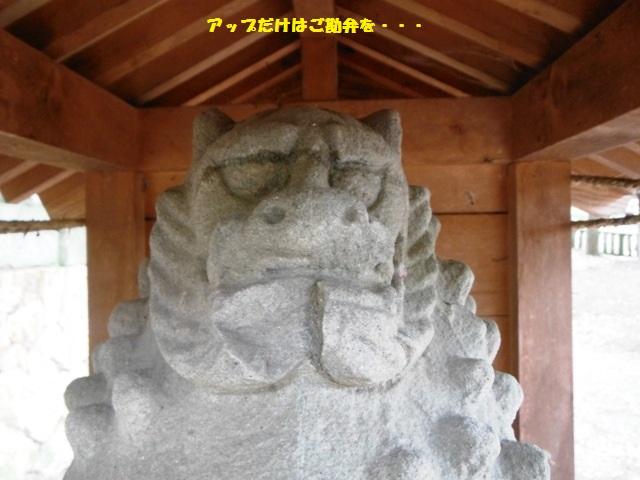 オフシーズン葛尾城2014 (57)