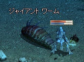 LinC0454ナマコ