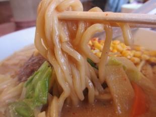 ドカメン 味噌ラーメン 麺